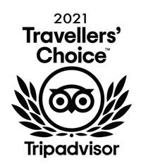 trip advisor travellers choice award
